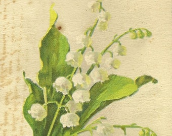 RESERVED LISTING (KS) Lily-of-the-Valley Muguet Porte Bonheur Stunning Botanical Postcard Artist Signed Vintage Postcard Catherine Klein