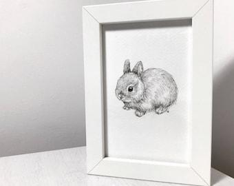Baby Bunny Original Drawing