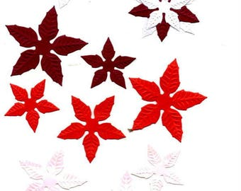 255 - Set cut poinsettias for your cards or scrapbooking