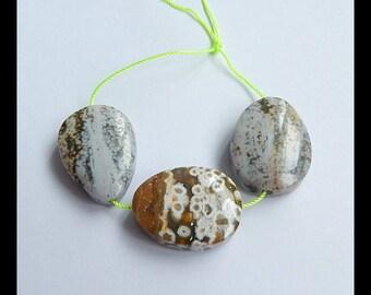 Sell 3 PCS Ocean Jasper Gemstone Pendant Bead Set,Ocean Jasper Loose Beads,27x20x9mm,26x19x8mm,22.04g(h0519)