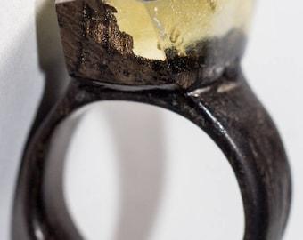 021 Resin wood ring