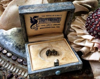 This Little Antique Presentation Jewelry Box Has A Dragon Inside