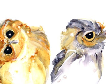 Owl Art Print, 12 x 16 Fine Art Print of Two Owls, Wildlife Decor, Whimsical Owl Art