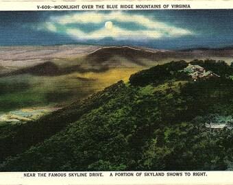 Blue Ridge Mountains, Skyline Drive, Skyland, Virginia - Vintage Postcard - Postcard - Unused (HHH)