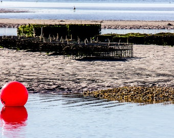 Low Tide, Fine Art Photography, Home Décor, Wall Art, Free Shipping, Abstract, Minimalist, Beach, Water, Ocean, Red,  Color Photography