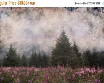 On Sale Beckoned to the silence of the trees..., Meadow, Flowers, Trees