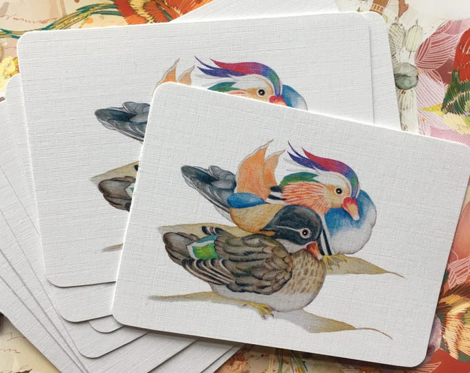 Mandarin Couple Duck mini art cards, clipart notebook, gift tags, notebook decoration, journal, nature notebooking, by Paula Kuitenbrouwer.