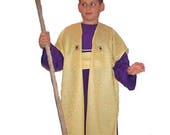 Boys Nativity Costume: Ma...