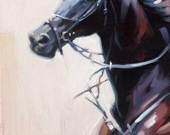 Horse Art Portrait - Alla Prima Painting