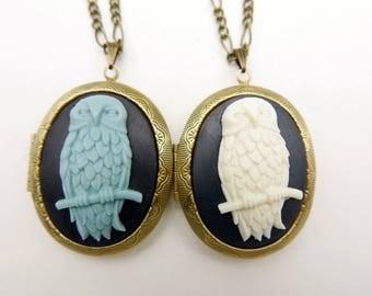 Owl locket Necklace jewelry 3040m