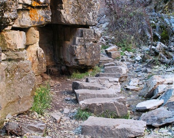 The Stone Path  -  Print  -  Photography