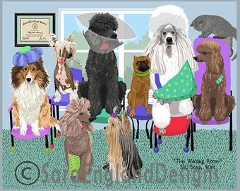 Waiting Room - 12 Poodle