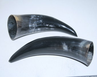 2 Cow horns ....  e2a83 ... Natural colored polished cow horns.,..