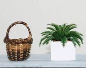 1:6 scale, miniature plant, fern, terracotta pot, wooden planter, BJD, doll, action figure, Blythe, Momoko, Obitsu,  Pullip, Barbie size