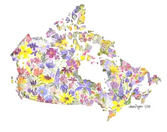 Wildflowers of Canada Limited Edition Archival Print 8.5 x11 print