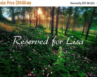 ON SALE Reserved for Lisa