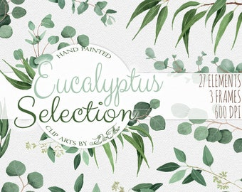 Watercolor Eucalyptus Clipart Greenery Clip Art Eucalyptus Greenery Baby Silver Dollar Leaf Green Leaves Illustration Vector Invitation Art