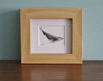Whale Watercolour Painting - Mammal - Framed Giclee print - Nature Art - Picture and gift for the home - Mini Frame - Ocean Collection