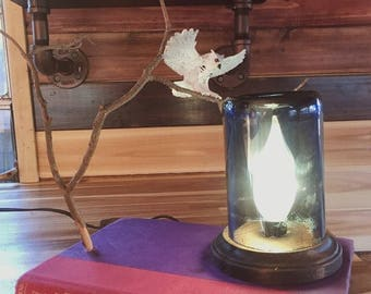 Harry Potter Book Lamp w/ Hedwig