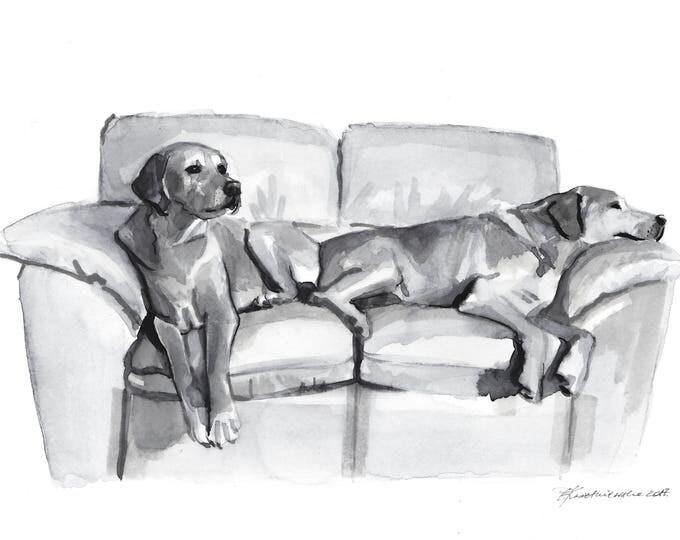Pet Portrait in Black and White