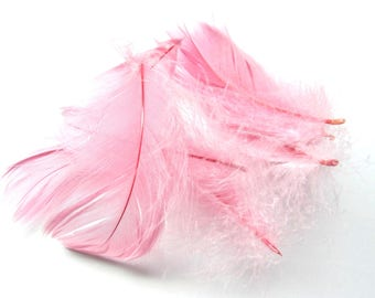 DOWN FEATHERS 20 D GOOSE PINK 10/12 CM