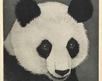 "Vintage Hand-Signed Original Aquatint Etching ""Panda"" By Indiana Artist Kenneth Reeve"