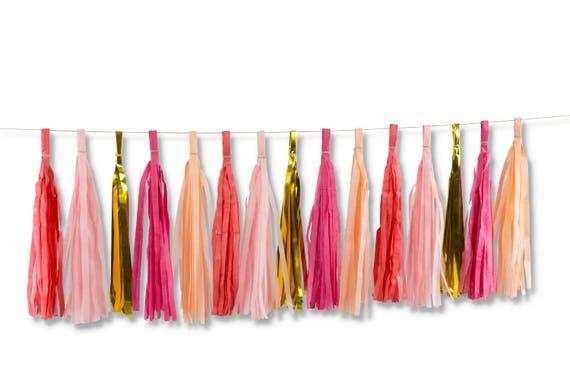 Strawberry Sangria Tassels, Tissue Tassels, Tassel Banner, Birthday Party Decor, DIY Tassels, Baby Shower Girl Wedding Decor Bachelorette