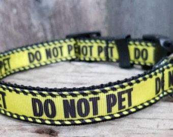 DO NOT PET <-- Dog Collars