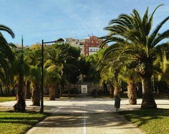 Tropical Print, Tropical Decor, Tropical Wall Art, Palm Tree Print, Valencia Print, Spain Print, Valencia Photography, Spain Photography