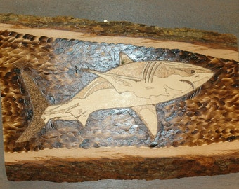 SHARK! - wood burned image