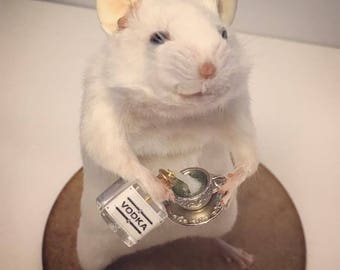 Taxidermy Mouse with VODKA and teacup ~ oddities, curio, curiosities