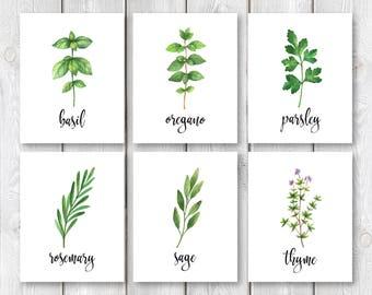 "Set of 6 Herbs and Spices Kitchen Print Set    8""x10"" DIGITAL DOWNLOAD    Farmhouse Kitchen Wall Decor    Printable Herb Garden Sign Set"