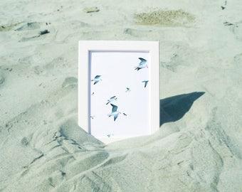 Seagulls 2 - Art, print, drawing, illustration,...
