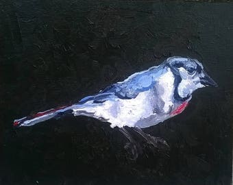 Cute Bird Oil Painting