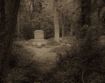 Bachelors Grove Cemetery Glossy Sepia Matted 8 X 10 Phot