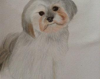 Customised Commission Animal  Drawings