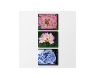 Pink flower print - Set of 3 floral print - Flowers wall print - Flowers printable - Office decor gift - Instant printable wall art - Flower