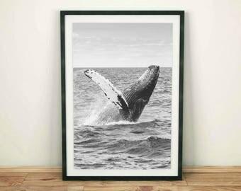 Whale Print, Whale Wall Art Black White, Whale Printable, Whale Wall Print, Whale Art Decor, Ocean Print, Ocean Art Decor, Black and White