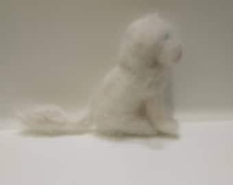 Small woollen white cat
