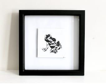 Frog Ink Illustration