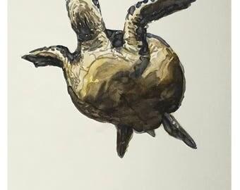 Turtle - original watercolor painting