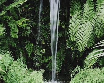 Untitled (waterfall)