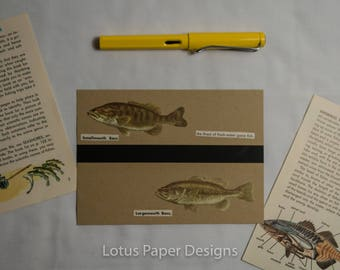 Handmade Blank Greeting Card (Flat A6) - Bass - Golden Guide to FISHES