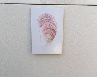 Original Pink Dot Shell Painting