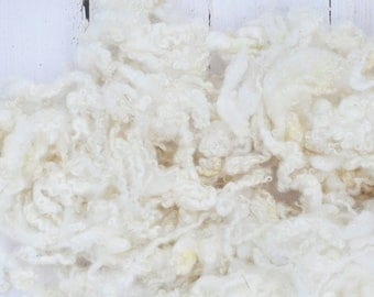 Natural White BFL Locks - Washed - Natural Wool - White - Undyed - Curly, Wavy - Art Fiber - 4 Ounces