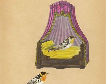 Honeymoon Suite. Original collage by Vivienne Strauss.