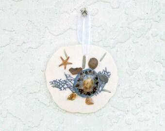 Turtle Sand Dollar Ornament, Sea Turtle, Blue and White, Coastal Xmas Decor, Christmas Tree, Coastal Beach Decor,Turtle Ornament