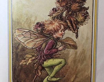 Flower Fairies of the Winter, Poems and Pictures by Cicely Mary Barker, First Edition, Copyright 1985, Original Printing Color Illustrations