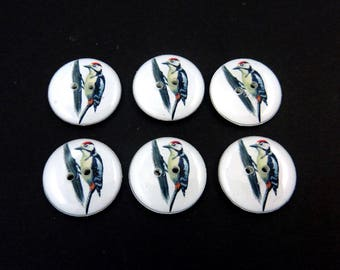 """6 Bird Sewing Buttons. Woodpecker Sewing Buttons. 3/4"""" or 20 mm."""