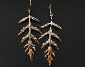 Artemis Leaf Earrings, Bronze, Wild Texas Plant, Hymenopappus Artemisiifolius, Handmade in Austin, Tx